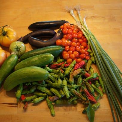 Food Day ofrece educación pública sobre alimentación