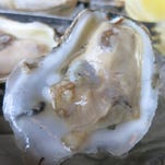 Tom's Oyster Bar in Royal Oak features a casually upscale seafood menu.
