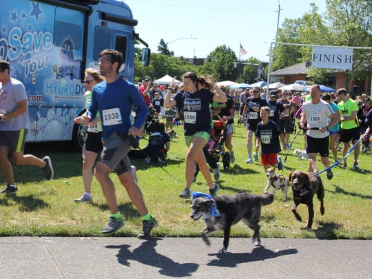 Runners begin a 5K fun run loop through Riverfront and Wallace Marine parks at the Willamutte Humane Society's WillaMutt Strut 2016.