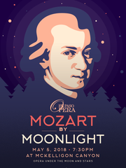 """Enjoy a sophisticated Cinco de Mayo with """"Mozart by Moonlight"""" on May 5 at McKelligon Canyon."""