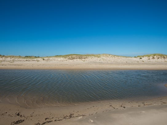 View of standing water next to the dunes on the beach