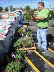 Adrian Andrade, an employee of Shopko in Seymour, said several hanging baskets and potted bedding plants were damaged by hail Tuesday night.