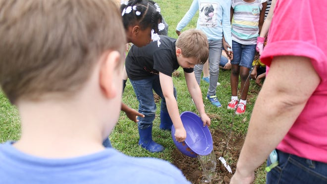 Moore Magnet Elementary second grader Noah Keyt waters his class' oak sapling during their Arbor Day planting celebration on Friday.