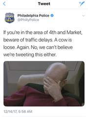 The Philadelphia Police Department had fun with Tweets when Stormy the cow escaped a living nativity - twice.
