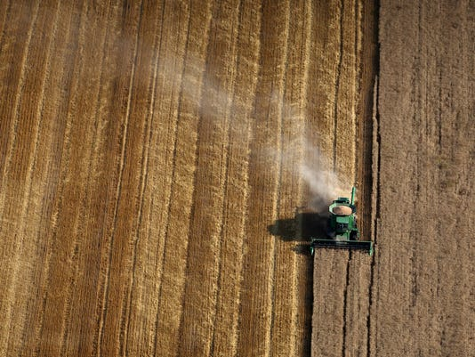 Agriculture, Wheat