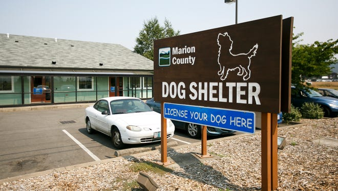 The Marion County Dog Shelter is looking for a new dog services manager after its previous manager was fired.