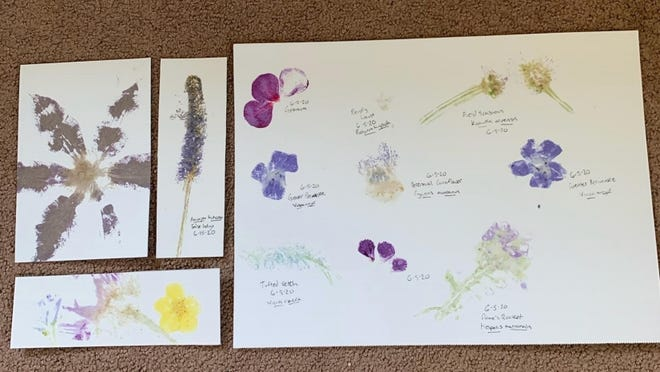 Flower prints made during a nature printing workshop hosted by the Monroe County 4-H.
