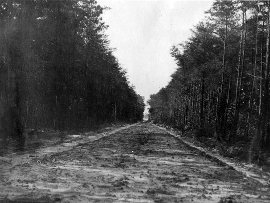 The clearing of the trees paved the way for the highway
