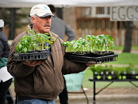 Chuck Long, of Greenbush Farms in Milaca, carries a Sartell Farmers Market customer's purchase of tomato and pepper plants to the car in this 2014 photo. Fresh vegetables remain the most popular attraction at farmers markets.