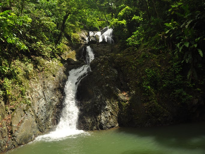 The argyle waterfall is tobago s premier waterfall hike the waterfall