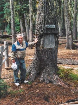 Maynard Drawson stands next to the Judge Waldo Heritage Tree in the Upper Klamath National Wildlife Refuge in September 2001.