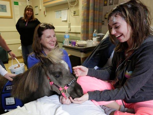 Horses in Hospitals _Youn.jpg