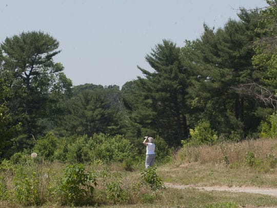 A woman walks along the trails of  Tall Pines State Preserve after a dedication ceremony Monday.