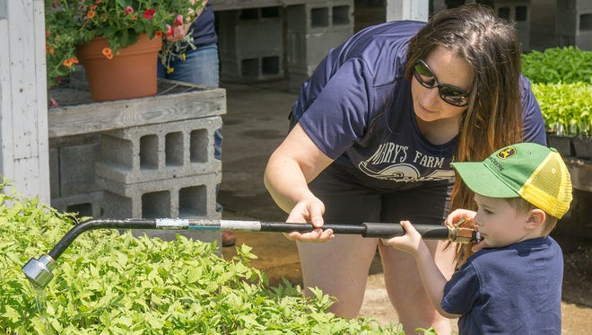 Rachel Lancucki helps 3-year-old son Bane learn to water flats of flowers and vegetables at Mary's Farm Market. Bane is the newest generation of Hauk family farmers.