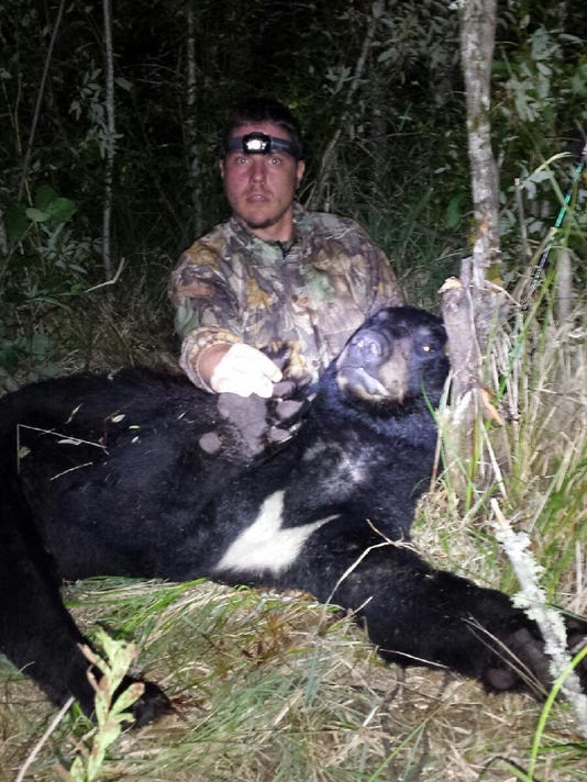 Curt Biely bear