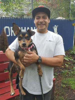 Voorhees Animal Orphanage trainer Rafael Santos holds Antonio, a miniature Pinscher transferred from Texas because of Hurricane Harvey. The 10-month-old puppy will be up for adoption for the first time Saturday.