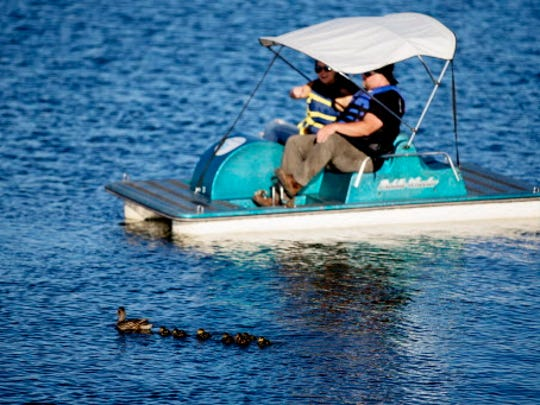 A family of ducks wades in the water as people in a paddleboat look on during the ninth day of Summerfest at Henry Maier Festival Park in Milwaukee, Wisconsin on Friday, July 8, 2016.