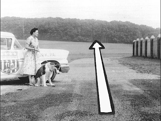 York Soap Box Derby chairwoman Vera Smith looks at proposed track site in Memorial Park; next to the east side of the left field wall of Memorial Stadium, and extending uphill to the tree line. (York County History Center photo, which appeared in The Gazette and Daily, York, PA; July 25, 1958)