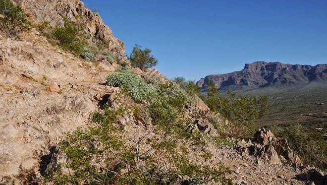High Point Trail leads to the summit of Silly Mountain near Apache Junction.