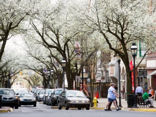 The Bradford Pear trees are blooming around Continental Square in York. Make sure you are able to enjoy spring blossoms without sneezing. YORK DAILY RECORD/SUNDAY NEWS - PAUL KUEHNEL
