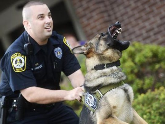York Area Regional Police Officer Michael Sampere shouts commands as his new K-9, 14 month old Vilko, snarls during a demonstration at the York Area Regional Police Department Thursday. (DAILY RECORD/SUNDAY NEWS - KATE PENN)