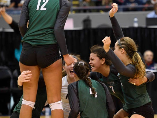 Novi players celebrate after defeating DeWitt in the