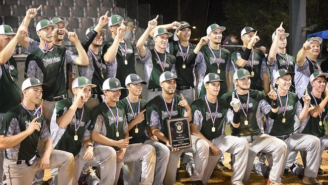 Fredericksburg not only won the county's first regional championship in 24 years this summer, they may have also revived interest in Lebanon County Legion baseball as a whole.