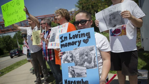 People hold up signs depicting the gorilla Harambe