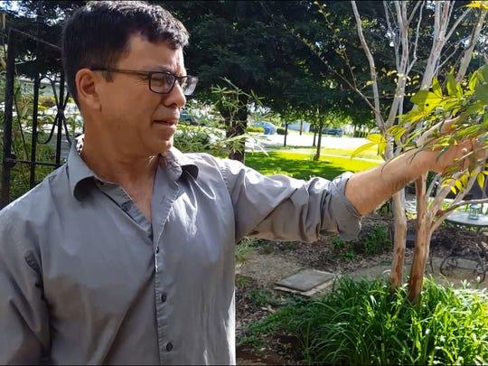 At his Redding home, landscape designer Kirkwood Hale looks over his drought-tolerant garden he designed.