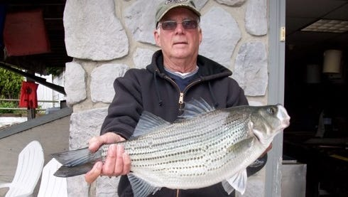 Rich Everett and his seven pound, 14-ounce hybrid stripe that he caught on Lake Hopatcong.