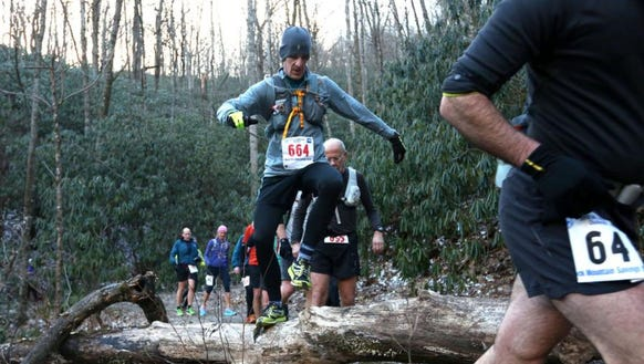 Runners climb tree branches during the 2016 Mount Mitchell