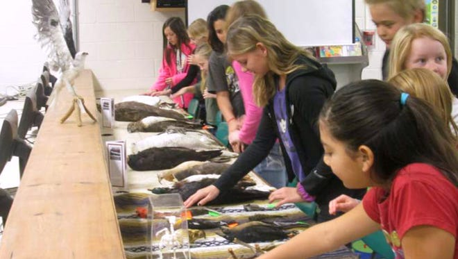 New Mexico State University wildlife science major Heather Herndon taught a lesson on birds at La Luz Elementary School in Alamogordo as part of an educational outreach program she implemented for the NMSU Wildlife Museum.