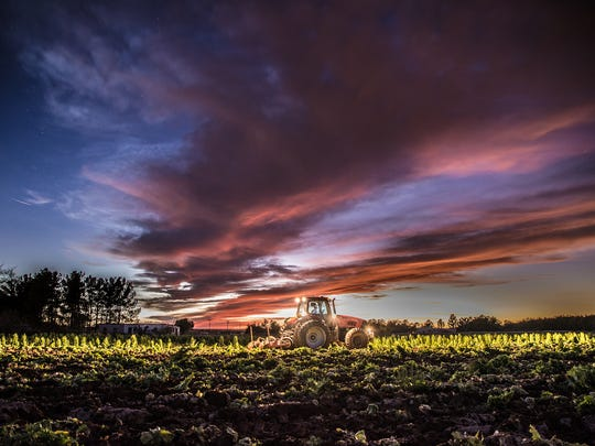This photographic creation of farmer Jay Hill depicts post-harvest tillage of a lettuce field on Hill Farms.