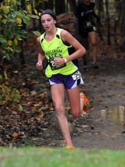 Mount Gilead Allison Johnson runs to a runner-up finish