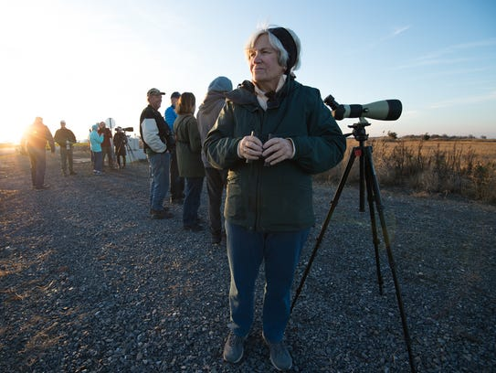 Sally Perry of Lewes looks for birds at Prime Hook