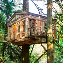 Tired Of Hotels Climb Into A Treehouse