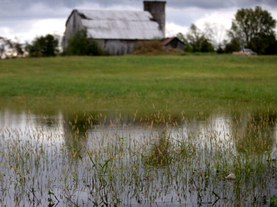 A flooded field along Elam Road on Tuesday, Oct. 14, 2014.