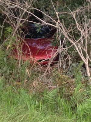Two people were injured after a car went into the woods near Pineda Causeway on Wednesday evening.