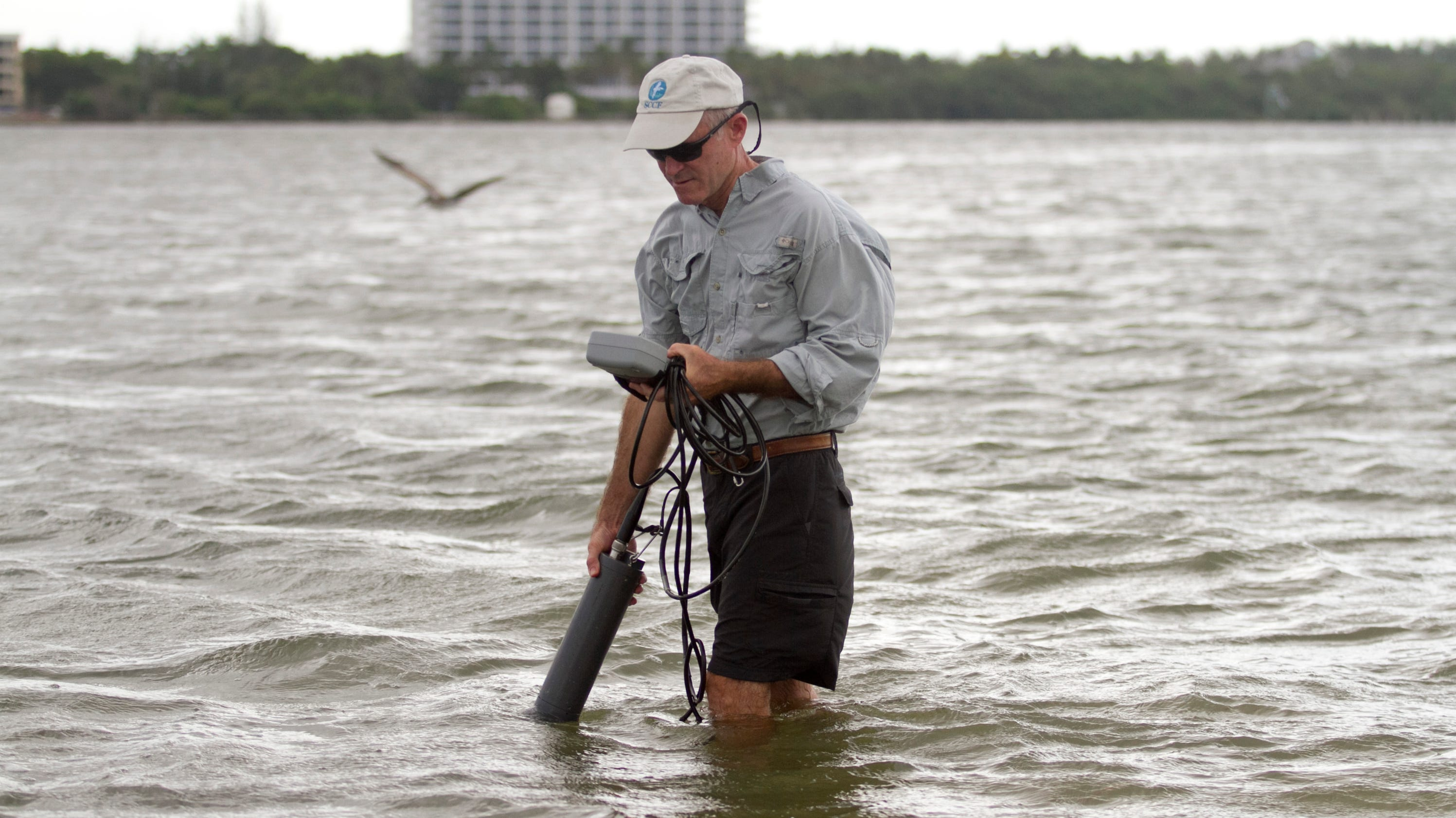Red tide reported off fort myers geenschuldenfo Gallery