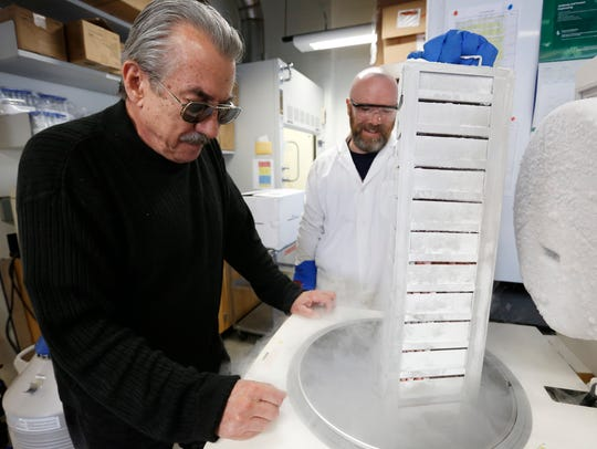 Professor David Soll looks on as research associate Brian Berger pulls out a rack of antibodies at the University of Iowa Biology lab in Iowa City in this file photo from October 2016. The lab houses one of the largest collections of antibodies being used for cancer research around the world.