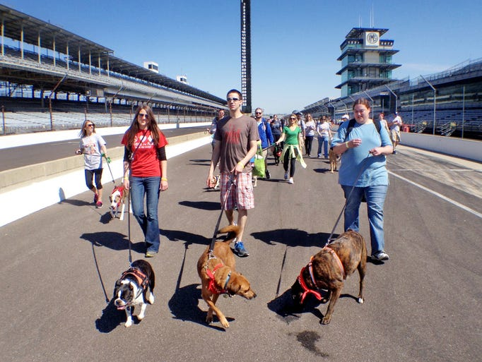 Dog owners enjoy a fun time with their pets at the Indianapolis Motor Speedway during the 2014 Mutt Strut benefitting the Humane Society of Indianapolis on Saturday, April 26, 2014.