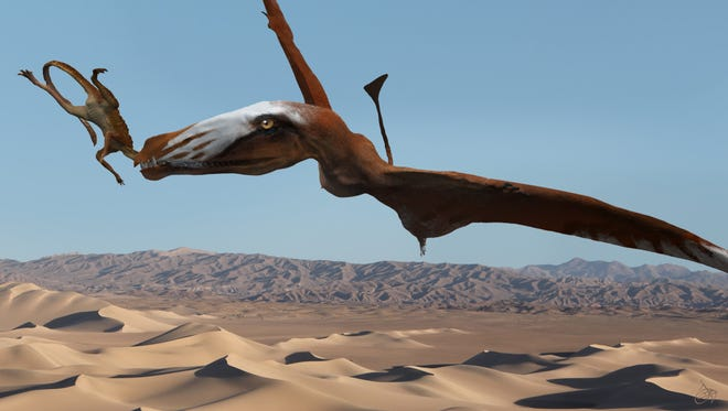 Artist's recreation of a giant pterosaur in the act of catching a sphenosuchian. The creatures lived near an oasis in what is now Utah.