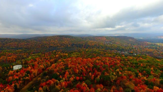 Fall foliage over Vestal.
