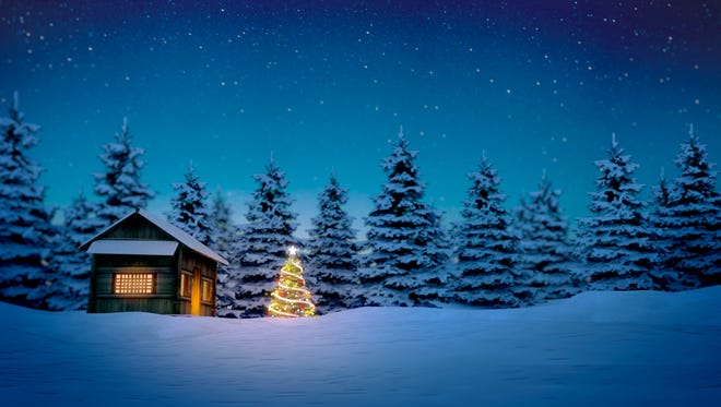 Christmas tree in front of cabin with pine trees in background.