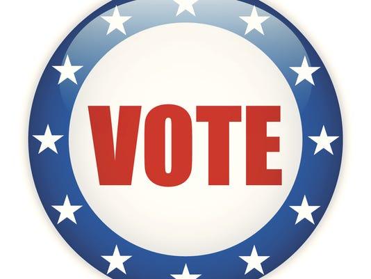 635911472719191974-vote.jpg