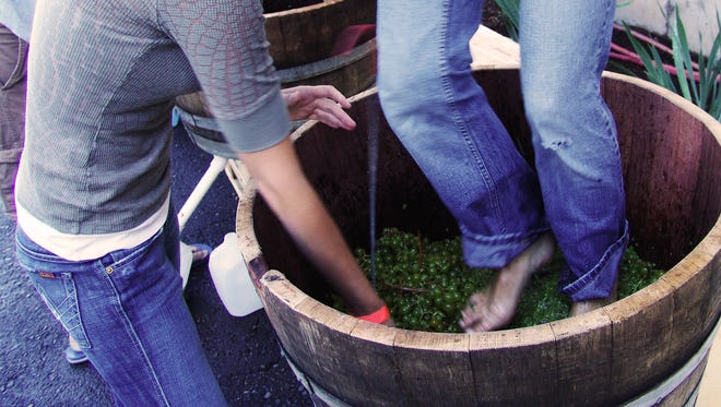 The 25th annual Oregon Grape Stomp Competition and Harvest Celebration happens 11 a.m. to 6 p.m. Saturday and Sunday, Sept. 19-20, at Willamette Valley Vineyards, 8800 Enchanted Way SE, Turner.