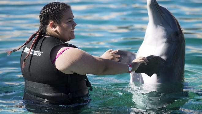 Celesti Lozano, 12, greets a dolphin at Dolphinaris Arizona  on the Salt River Reservation on Oct. 15, 2016. The new facility allows customers to swim with dolphins in an up-close environment.