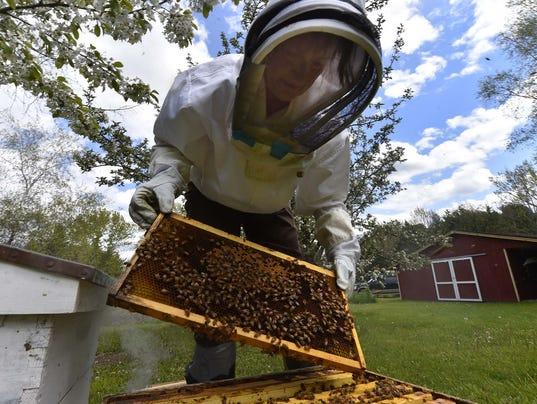 636320026470857013-DCA-0527-beekeeping-1.jpg