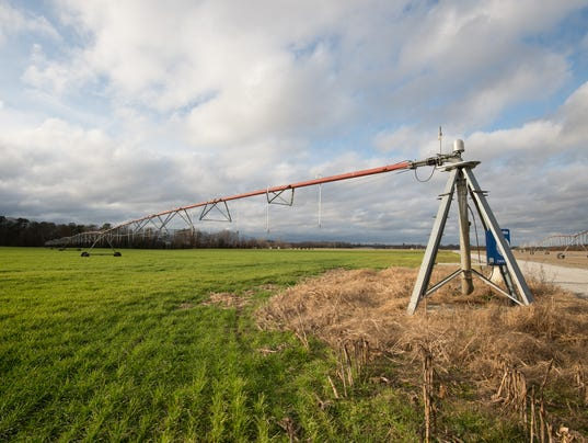 News: Mountaire Farm
