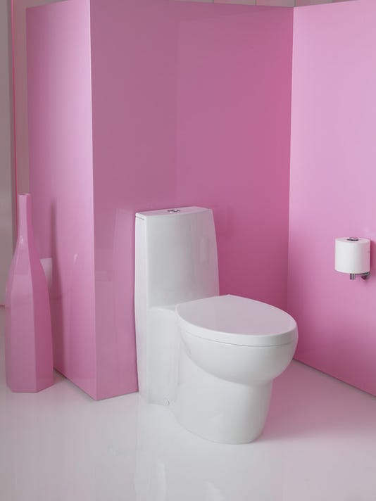 Plumber: Dress up your bathroom with a skirted toilet